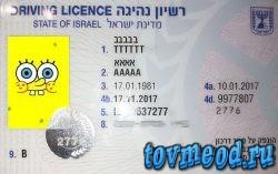 Как подтвердить иностранные права в Израиле без теудат зеута