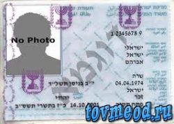 История Екатерины о переводчиках в МВД Израиля, правах и страховке на машину